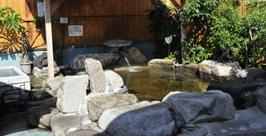 大川温泉緑の湯の露天風呂